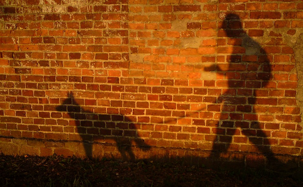 Sillhoeutte of a person walking a dog while looking at a phone. The person and the dog are shadows against a reddish brick wall.