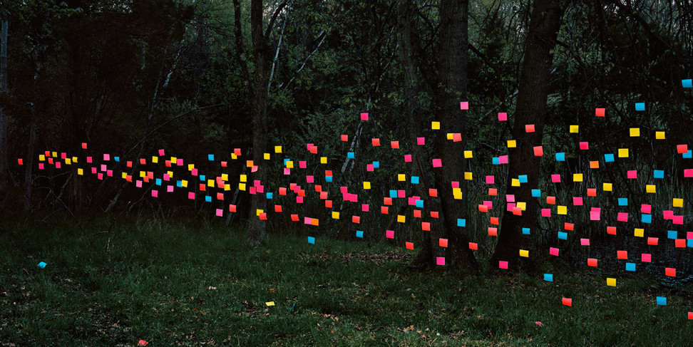 "A ""swarm"" of post-its in a forest."