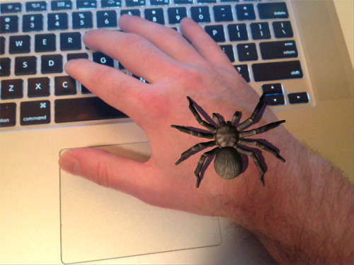 Spider in an augmented reality. Image via Krisabel.com.