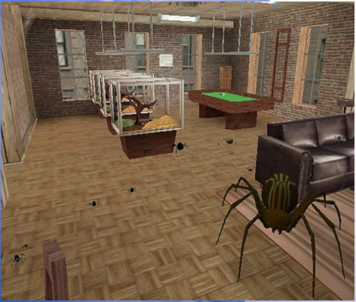 Spiders in a virtual reality environment. Image via Virtual Reality Medical Center