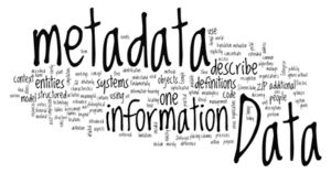 """An image of words jumbled together, with some words emboldened and enlarged. The largest bold word is """"Metadata,"""" which is the focus of the artwork. Other words hat are large and bold include """"information,"""" """"definitions,"""" and """"systems""""."""