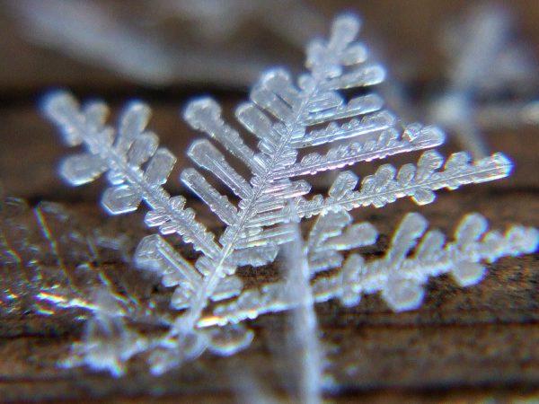 Macro image of a snowflake