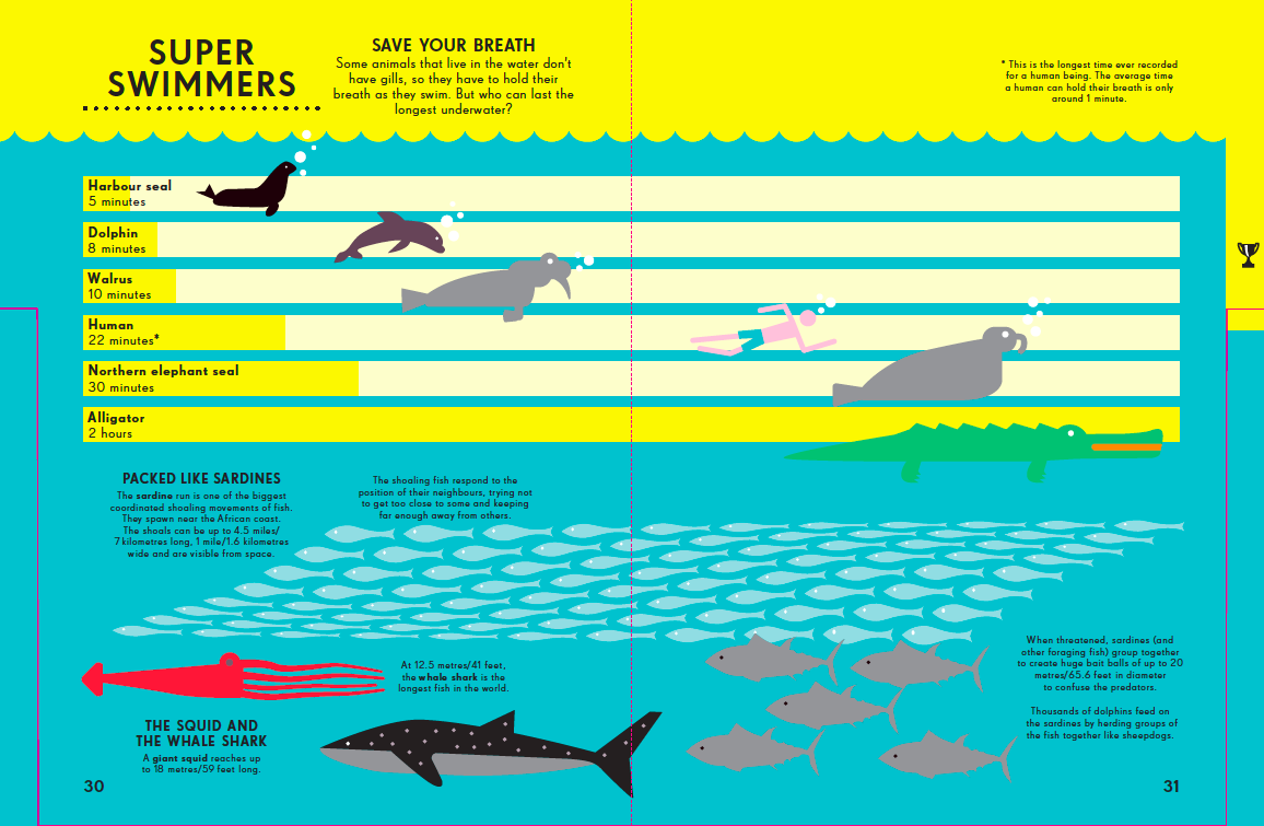 Infographic entitled Super Swimmers showing how long different animals can hold their breath